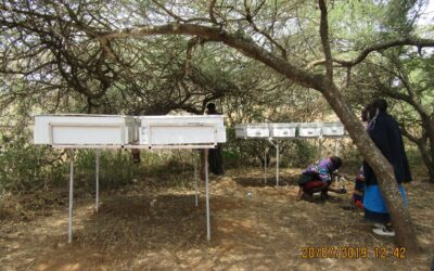 WASH profile get enhanced in Karagwe and Kyerwa Districts